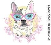 bulldog vector  illustration | Shutterstock .eps vector #640240996