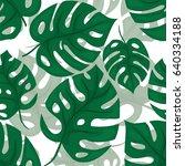 monstera seamless background.... | Shutterstock .eps vector #640334188
