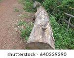 timber  | Shutterstock . vector #640339390