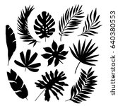 tropical leaf silhouette... | Shutterstock .eps vector #640380553