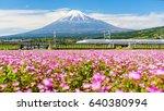 shizuoka  japan   may 05  2017  ...   Shutterstock . vector #640380994