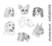 Dog Breed Portraits Hand Drawn...