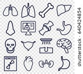 anatomy icons set. set of 16... | Shutterstock .eps vector #640424854