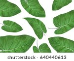 green tropical leaf branches on ... | Shutterstock . vector #640440613