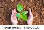 farmer hand planting sapling to ...   Shutterstock . vector #640479628