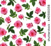 pink rose flowers and leaves... | Shutterstock . vector #640500358