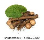 burdock root isolated | Shutterstock . vector #640622230
