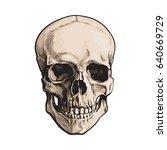 Hand Drawn Human Skull ...