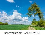 spring countryside with green... | Shutterstock . vector #640829188