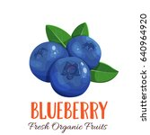 vector blueberry. fruit berry... | Shutterstock .eps vector #640964920