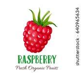 vector strawberries. fruit... | Shutterstock .eps vector #640965634
