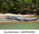 Australia  Alligator River ...