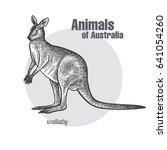 wallaby or kangaroo hand... | Shutterstock .eps vector #641054260
