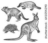 tasmanian devil  platypus ...