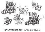 Set Of Grapes Monochrome Sketc...