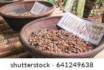 raw beans of luwak coffee in... | Shutterstock . vector #641249638