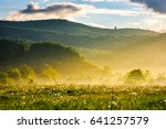 dandelion field in foggy valley.... | Shutterstock . vector #641257579