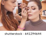 professional make up artist... | Shutterstock . vector #641294644