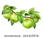 Apple On A Branch  With Leaves  ...