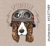 Portrait Of A Spaniel Dog In A...