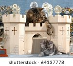Stock photo british shorthair tabby cat and kitten play in a castle 64137778