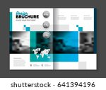 business template illustration. ... | Shutterstock . vector #641394196