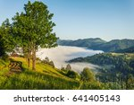beautiful sunny day is in... | Shutterstock . vector #641405143