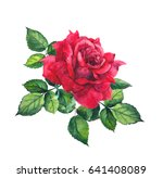 Stock photo red rose with leaves watercolor for wedding save date card 641408089