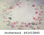 pink and white rose flowers and ... | Shutterstock . vector #641413840