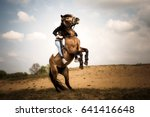 rearing horse with rider | Shutterstock . vector #641416648