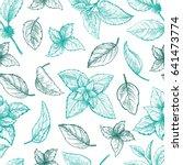 mint hand sketch vector... | Shutterstock .eps vector #641473774