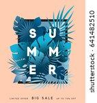 hello summer banner tropical... | Shutterstock .eps vector #641482510