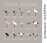 bird crane species set cartoon... | Shutterstock .eps vector #641509594