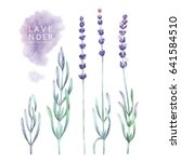 watercolor collection of... | Shutterstock . vector #641584510