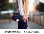 close up of stylish female... | Shutterstock . vector #641607808
