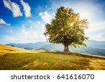 bright rolling countryside... | Shutterstock . vector #641616070