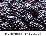 blackberry background | Shutterstock . vector #641666794