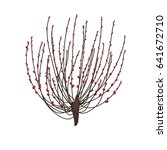 peach flower is symbol of... | Shutterstock .eps vector #641672710