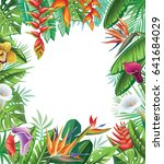 frame from tropical plants and... | Shutterstock .eps vector #641684029