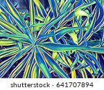 tropical leafy flowerbed.... | Shutterstock . vector #641707894