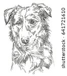 Border Collie Vector Isolated...
