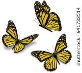 three golden monarch butterfly  ... | Shutterstock . vector #641733514