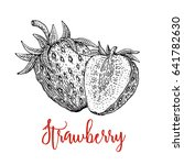 strawberry vector drawing.... | Shutterstock .eps vector #641782630