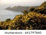 Irish Landscape With Lighthous...