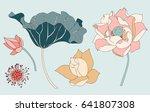 lotus vector elements set | Shutterstock .eps vector #641807308