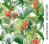 tropical palm leaves and... | Shutterstock .eps vector #641827180