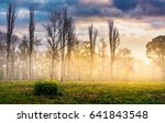 foggy sunrise on the meadow in forest. mysterious autumn landscape. - stock photo