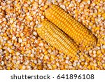 Dried Corn With A Head As A...