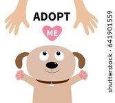 adopt me. dog face. pet... | Shutterstock .eps vector #641901559