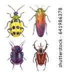 watercolor illustrations... | Shutterstock . vector #641986378